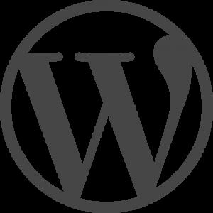 Black Friday für WordPress - Angebote für Themes und Plugins